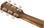 Fender PM-4CE Auditorium Limited, Ovangkol Fingerboard, Natural w/case_8